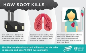 soot-kills-sierra-club-graphic