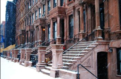 Cold Brownstone